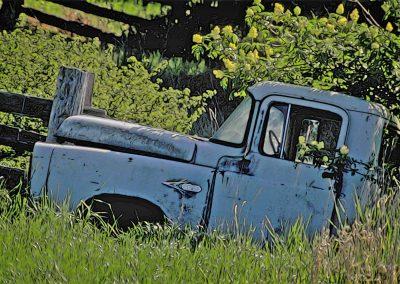 abandoned 1957 Dodge pickup