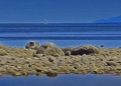 Summer Low Tide - 16x48 $425