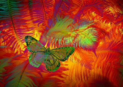 abstract with ferns and butterfly