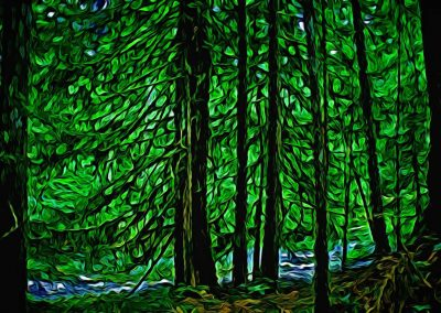 Creekside Forest -24x36 $475