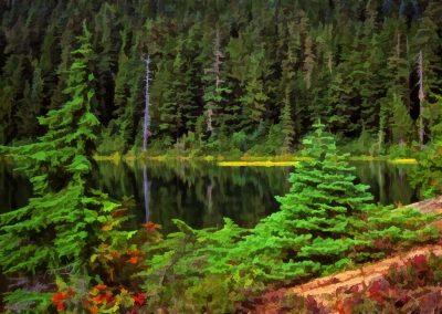 Tranquil Mountain Tarn