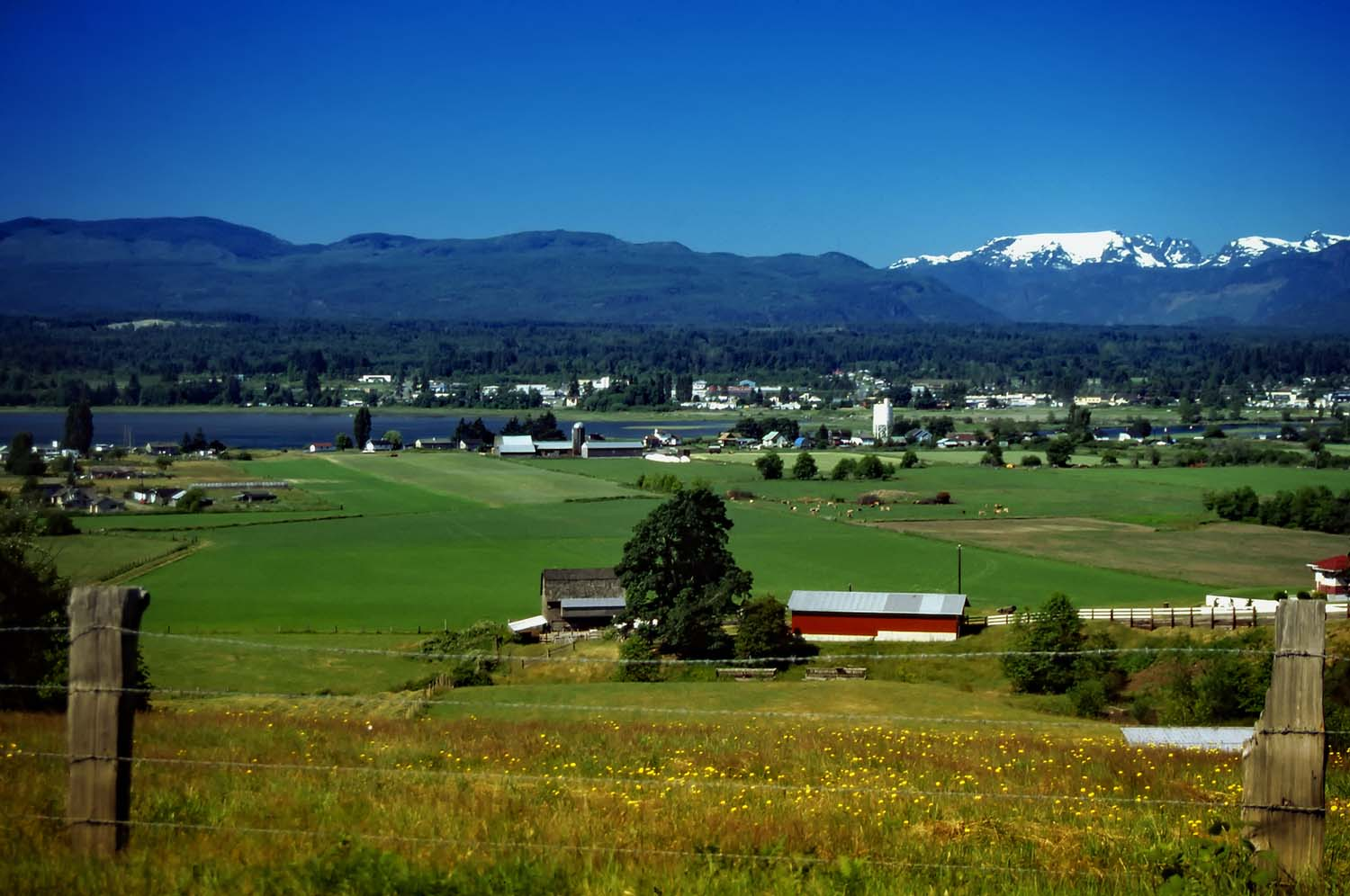 Comox Valley farmland and glacier