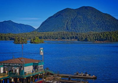 Tofino Harbour, Opitsat, and Mears Island