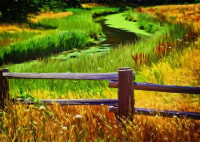 stream, fence, and long grass