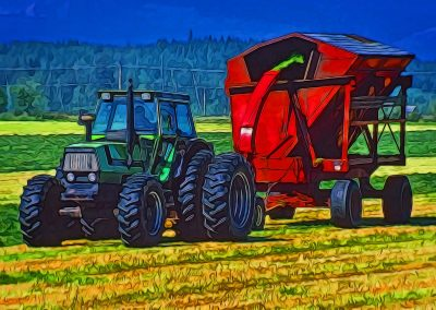 thresher collecting hay at the farm