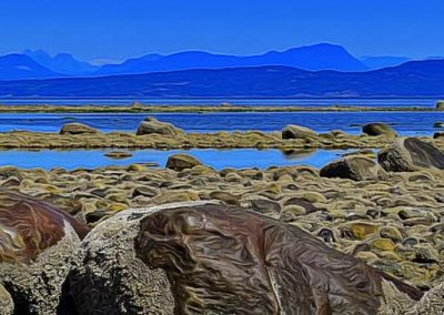 rocky shoreline at low tide