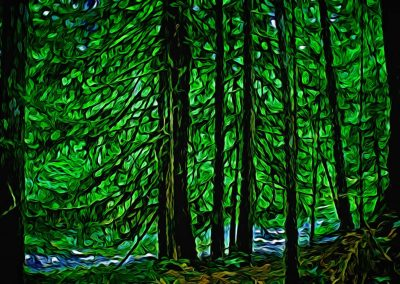 abstract forest by a creek