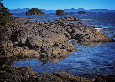 Rugged West Coast Shoreline