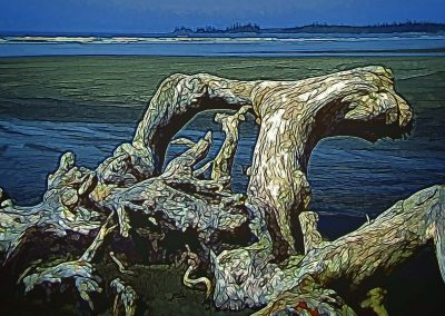 contorted piece of driftwood on the beach at Pacific Rim National Park Reserve