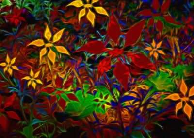an abstract of multiple colourful flowers