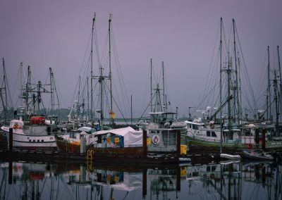 fishing boats moored at Comox wharf on a foggy day