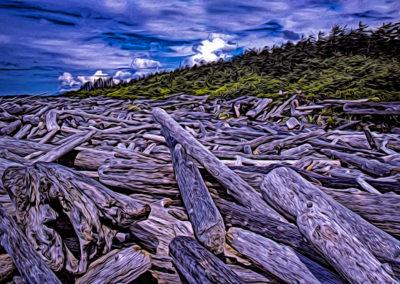 Beach Logs Clutter