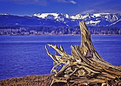 Comox Glacier & Estuary
